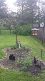 Mary's Garden in Progress